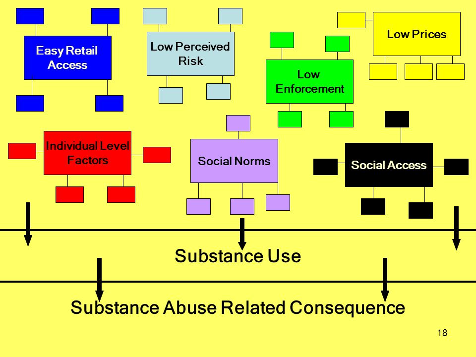 18 Individual Level Factors Social Norms Social Access Easy Retail Access Low Perceived Risk Low Enforcement Low Prices Substance Use Substance Abuse
