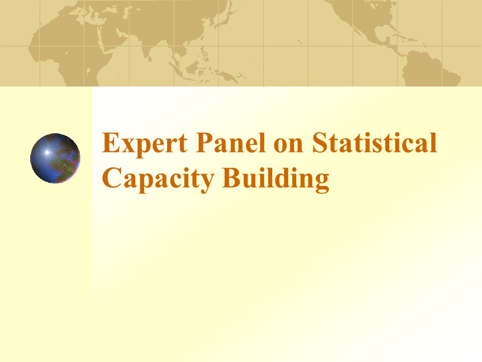 Expert Panel on Statistical Capacity Building
