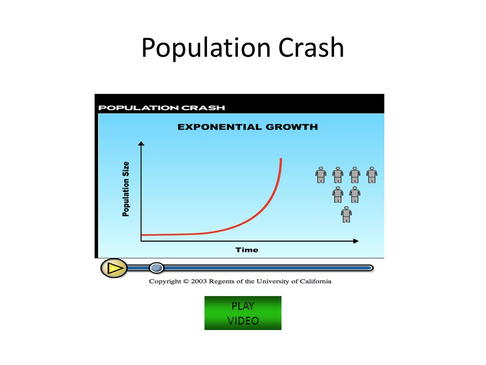 Population Crash PLAY VIDEO