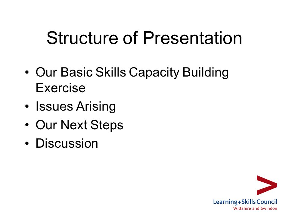 Structure of Presentation Our Basic Skills Capacity Building Exercise Issues Arising Our Next Steps Discussion