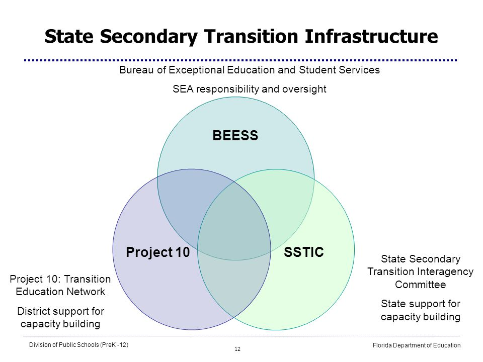 12 Division of Public Schools (PreK -12) Florida Department of Education BEESS Project 10SSTIC State Secondary Transition Infrastructure State Seconda