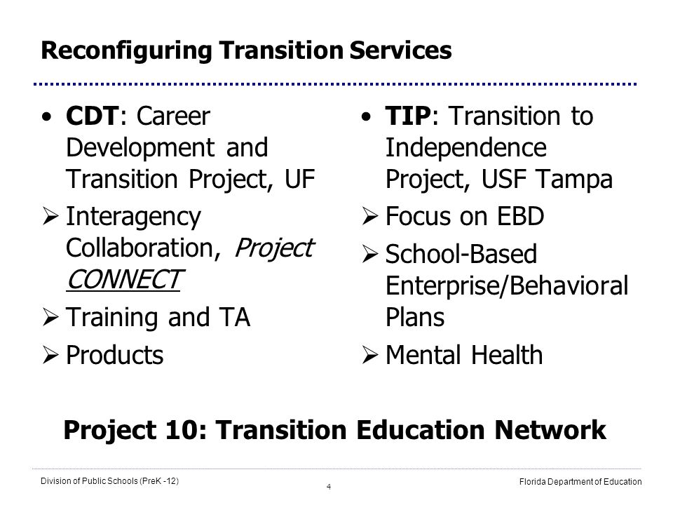 4 Division of Public Schools (PreK -12) Florida Department of Education Reconfiguring Transition Services CDT: Career Development and Transition Proje