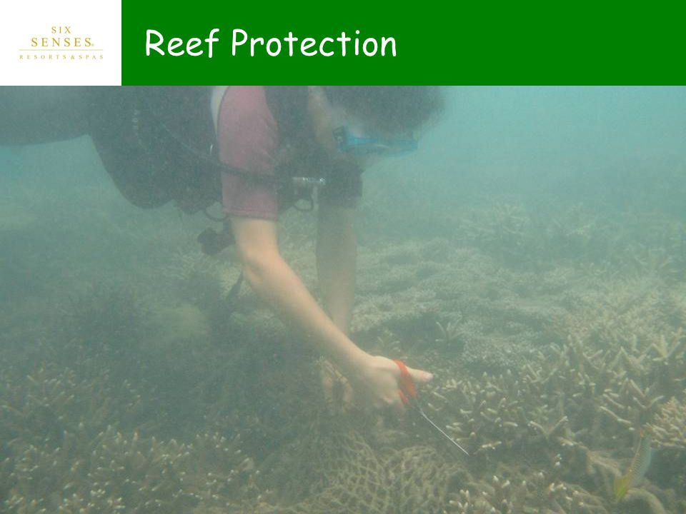 Reef Protection