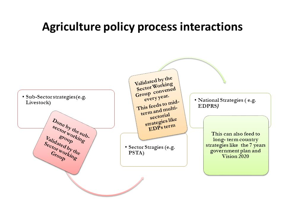 Agriculture policy process interactions Sub-Sector strategies(e.g.