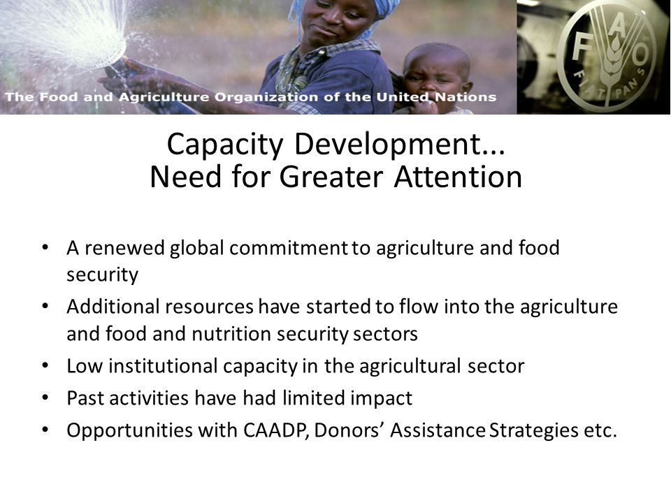 FAO and Capacity Building Process versus Outputs Three Dimensions Easy to Deliver….