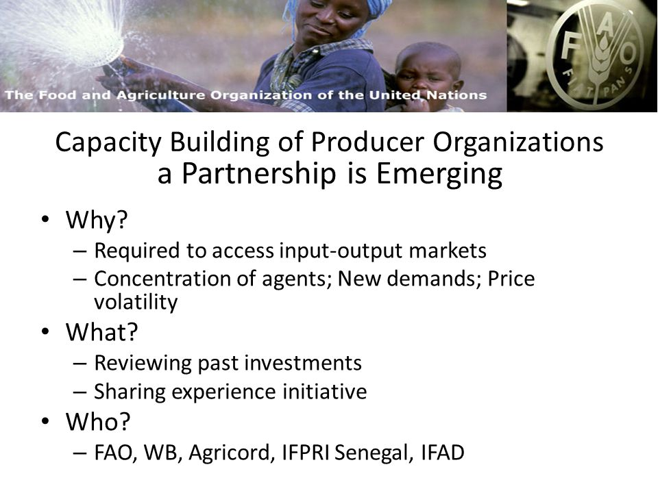 FAO and Capacity Building Planning and Policy Units – To deal with complex institutional relations – To lead policy debate for policy reforms – To defend the ag.