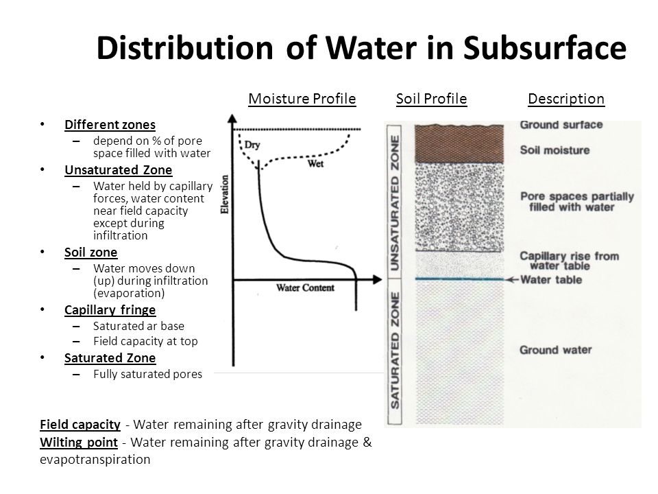 Distribution of Water in Subsurface Different zones – depend on % of pore space filled with water Unsaturated Zone – Water held by capillary forces, w