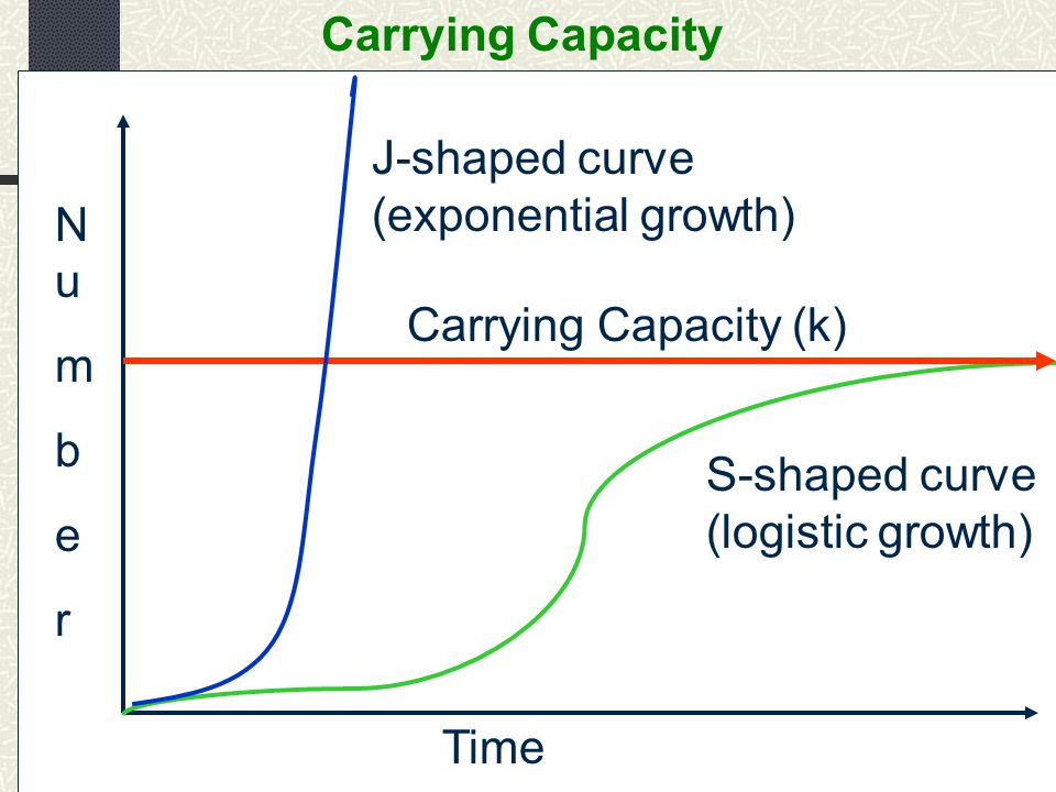 Carrying Capacity Carrying Capacity (k) NumberNumber Time J-shaped curve (exponential growth) S-shaped curve (logistic growth)