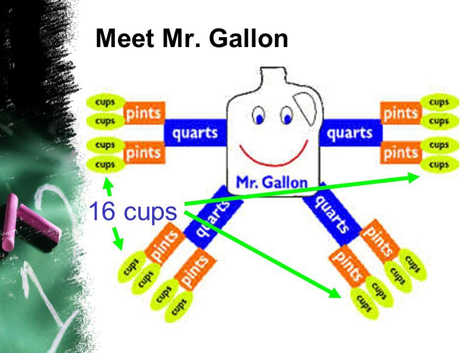 Meet Mr. Gallon 16 cups
