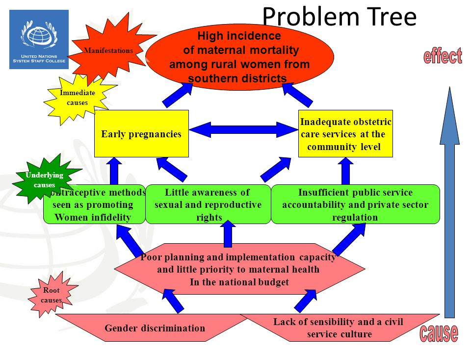 Problem Tree High incidence of maternal mortality among rural women from southern districts Early pregnancies Inadequate obstetric care services at th