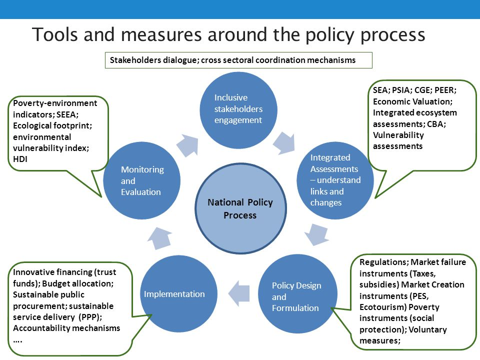 Tools and measures around the policy process Step 1: Engage stakeholders on capacity development Step 2: Assess capacity assets and needs Step 3: capa