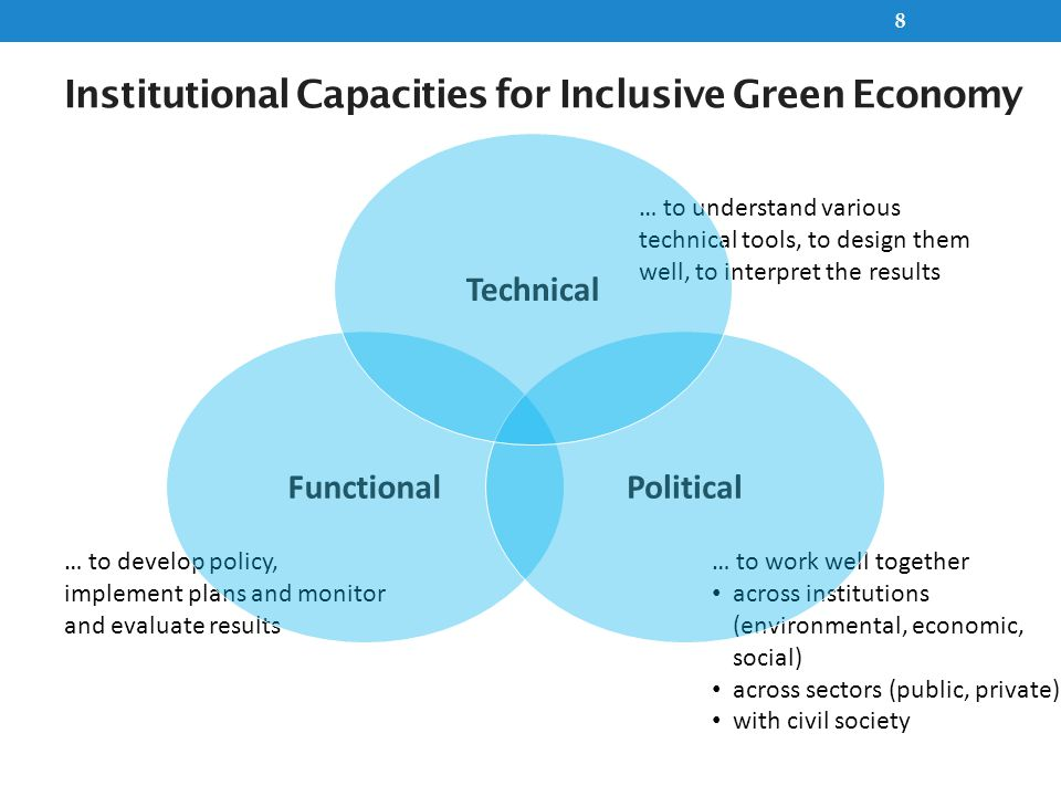 Institutional Capacities for Inclusive Green Economy 8 … to develop policy, implement plans and monitor and evaluate results Functional … to work well