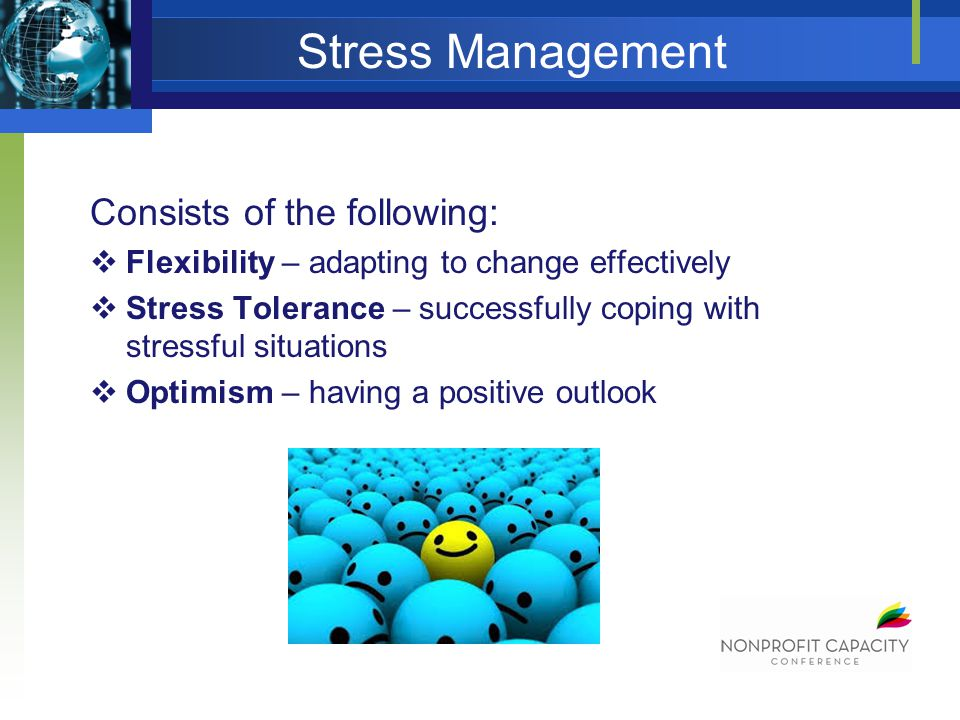 Stress Management Consists of the following: Flexibility – adapting to change effectively Stress Tolerance – successfully coping with stressful situations Optimism – having a positive outlook