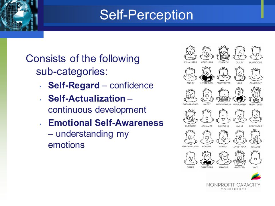 Self-Perception Consists of the following sub-categories: Self-Regard – confidence Self-Actualization – continuous development Emotional Self-Awareness – understanding my emotions