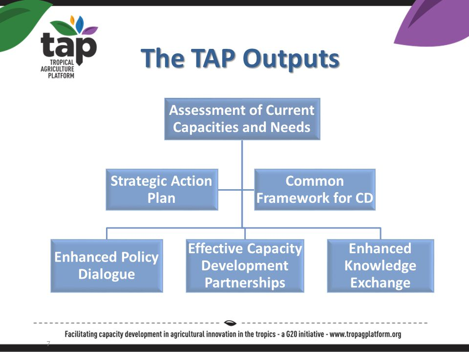 Inception Phase Workplan Output 1: TORs of Needs and Capacity Assessment Output 1: TORs of Needs and Capacity Assessment – Desk studies: priorities, capacities & needs of stakeholders to strengthen agro-innovation systems – Stock-taking of existing initiatives in capacity development (CD) incl.