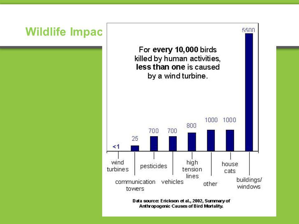 Wildlife Impacts