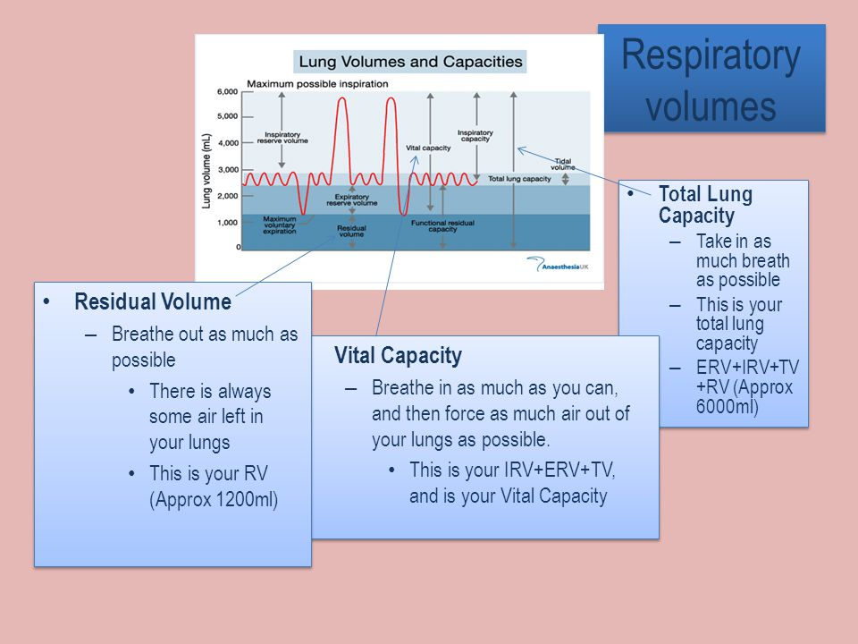 Respiratory volumes Total Lung Capacity – Take in as much breath as possible – This is your total lung capacity – ERV+IRV+TV +RV (Approx 6000ml) Total Lung Capacity – Take in as much breath as possible – This is your total lung capacity – ERV+IRV+TV +RV (Approx 6000ml) Vital Capacity – Breathe in as much as you can, and then force as much air out of your lungs as possible.