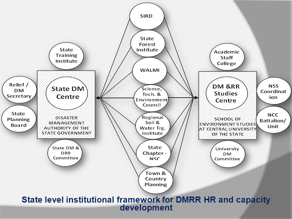 State level institutional framework for DMRR HR and capacity development