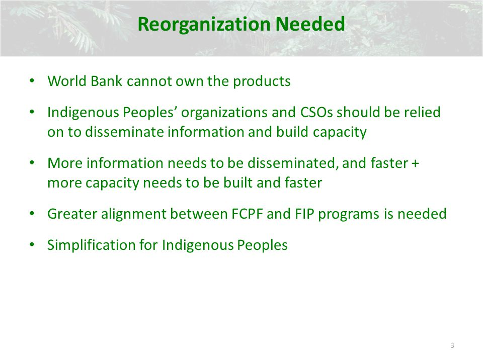 Reorganization Needed World Bank cannot own the products Indigenous Peoples organizations and CSOs should be relied on to disseminate information and build capacity More information needs to be disseminated, and faster + more capacity needs to be built and faster Greater alignment between FCPF and FIP programs is needed Simplification for Indigenous Peoples 3
