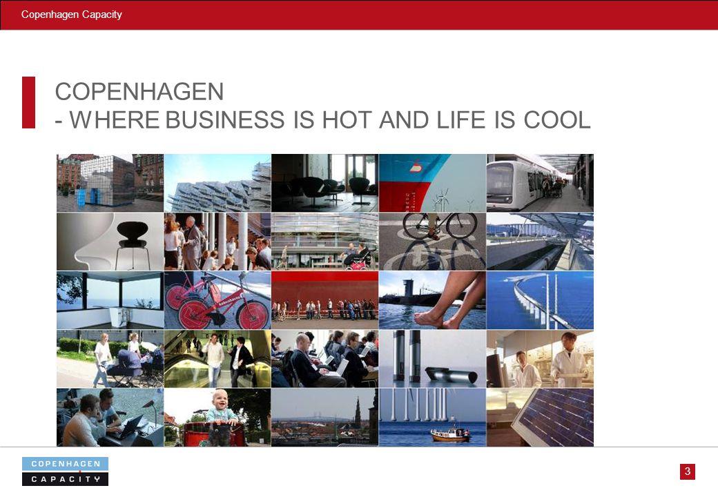 Copenhagen Capacity COPENHAGEN - WHERE BUSINESS IS HOT AND LIFE IS COOL 3
