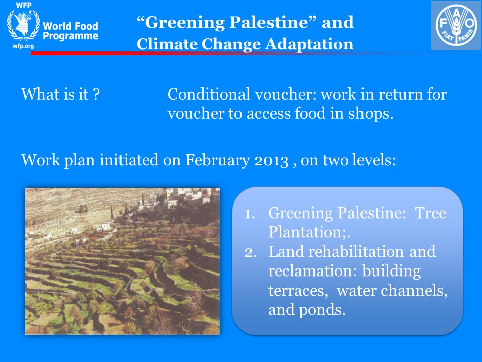 Greening Palestine and Work plan initiated on February 2013, on two levels: Climate Change Adaptation What is it Conditional voucher: work in return for voucher to access food in shops.