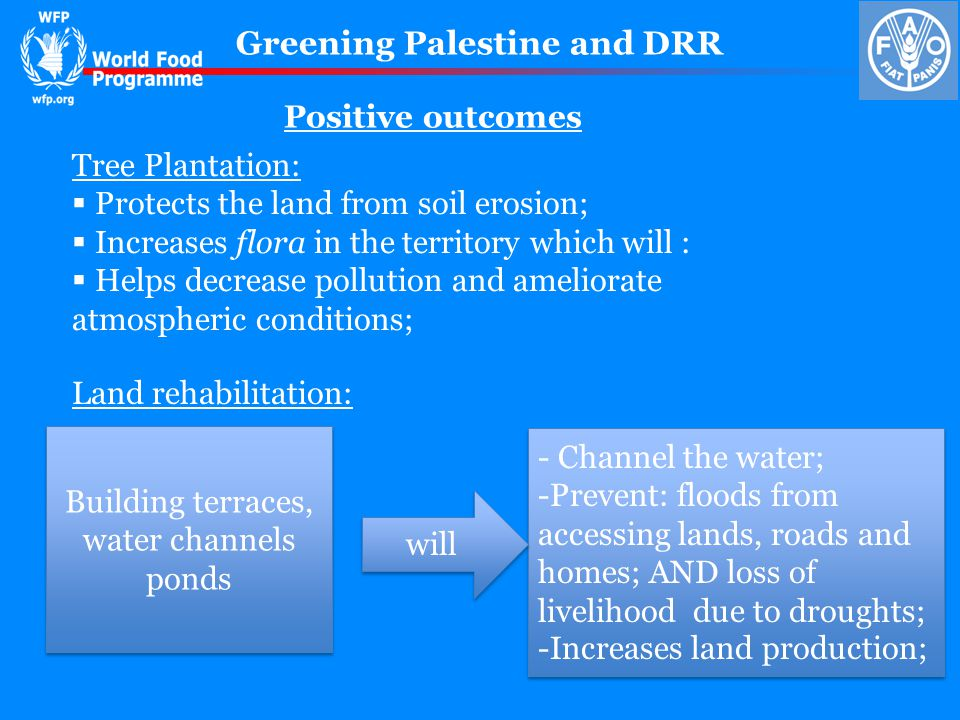 Greening Palestine and DRR Tree Plantation: Protects the land from soil erosion; Increases flora in the territory which will : Helps decrease pollution and ameliorate atmospheric conditions; Land rehabilitation: Building terraces, water channels ponds Building terraces, water channels ponds - Channel the water; -Prevent: floods from accessing lands, roads and homes; AND loss of livelihood due to droughts; -Increases land production; - Channel the water; -Prevent: floods from accessing lands, roads and homes; AND loss of livelihood due to droughts; -Increases land production; will Positive outcomes