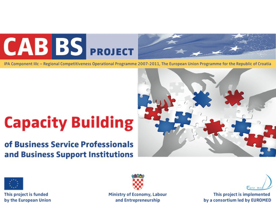 1 Capacity building of Business Service Professionals and Business Support Institutions