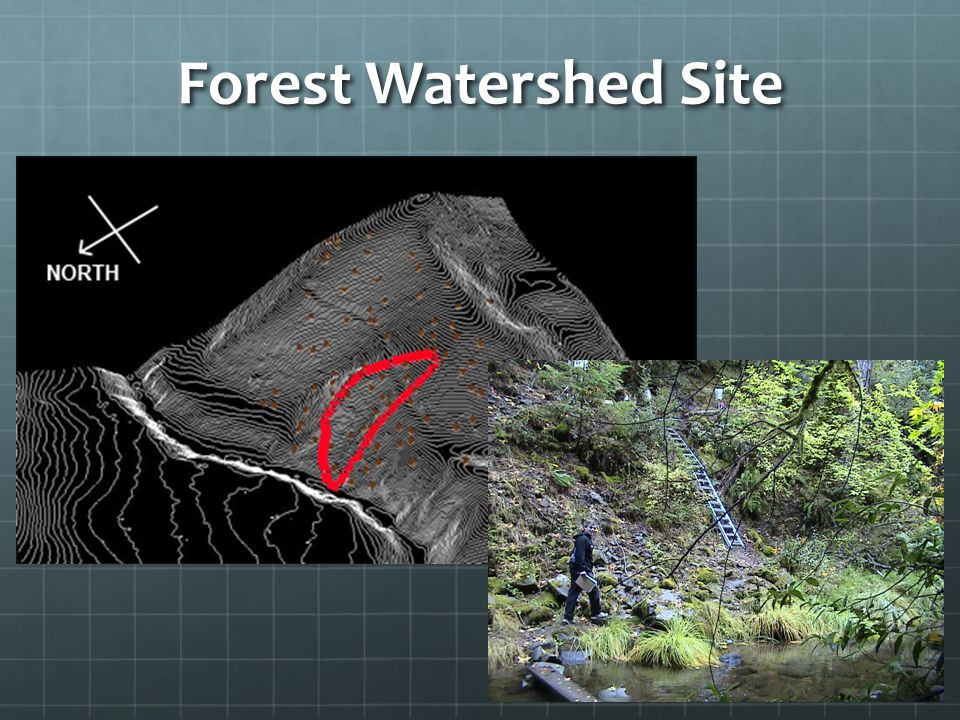 Forest Watershed Energy Harvested Watershed Most nodes struggle to harvest sunlight