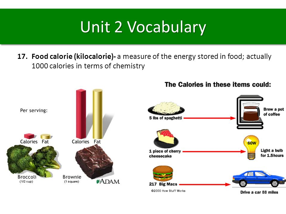 17.Food calorie (kilocalorie)- a measure of the energy stored in food; actually 1000 calories in terms of chemistry Unit 2 Vocabulary