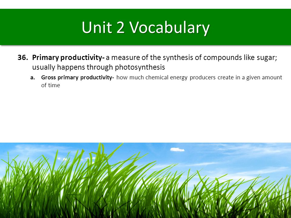Unit 2 Vocabulary 36.Primary productivity- a measure of the synthesis of compounds like sugar; usually happens through photosynthesis a.Gross primary
