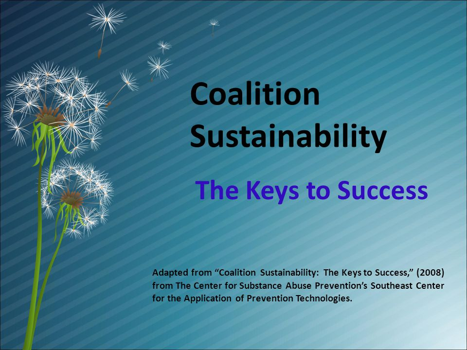 Coalition Sustainability The Keys to Success Adapted from Coalition Sustainability: The Keys to Success, (2008) from The Center for Substance Abuse Preventions Southeast Center for the Application of Prevention Technologies.