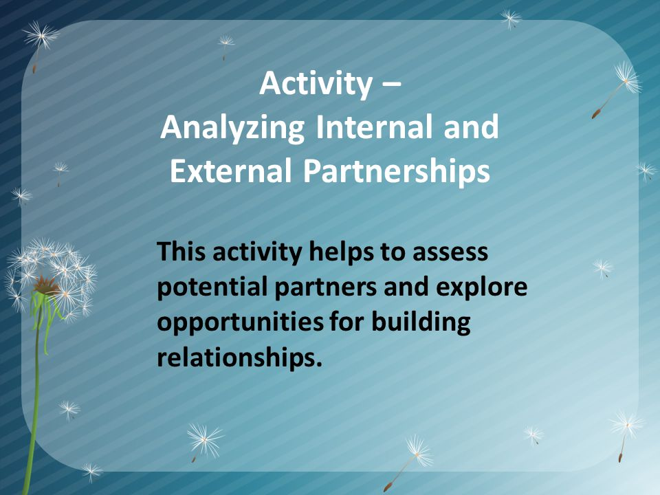 Activity – Analyzing Internal and External Partnerships This activity helps to assess potential partners and explore opportunities for building relationships.