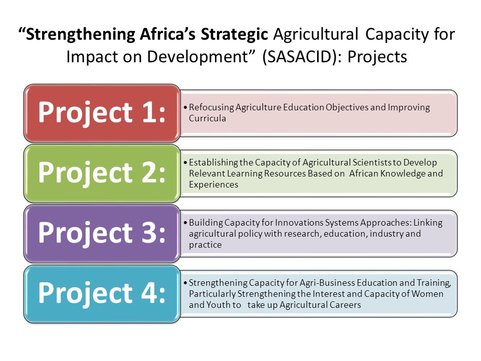 Strengthening Africas Strategic Agricultural Capacity for Impact on Development (SASACID): Projects Refocusing Agriculture Education Objectives and Im