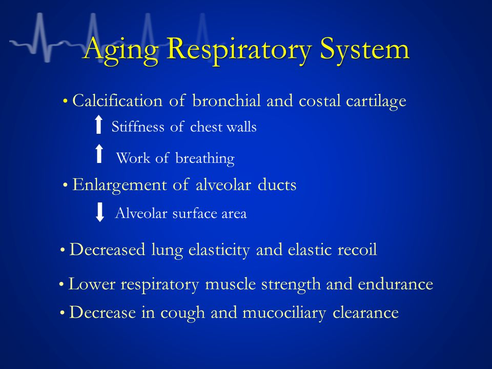 Aging Respiratory System Stiffness of chest walls Work of breathing Alveolar surface area Enlargement of alveolar ducts Calcification of bronchial and costal cartilage Decreased lung elasticity and elastic recoil Lower respiratory muscle strength and endurance Decrease in cough and mucociliary clearance