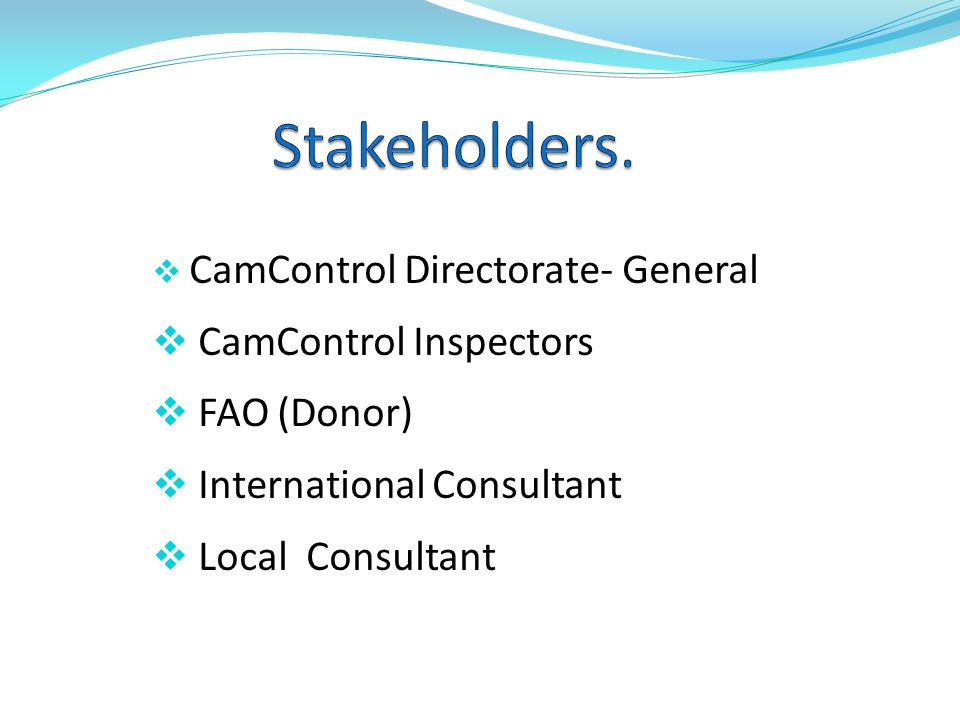CamControl Directorate- General CamControl Inspectors FAO (Donor) International Consultant Local Consultant
