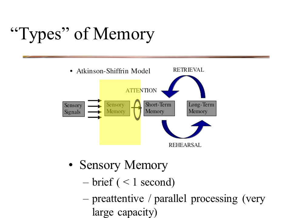 Types of Memory Sensory Memory –brief ( < 1 second) –preattentive / parallel processing (very large capacity)