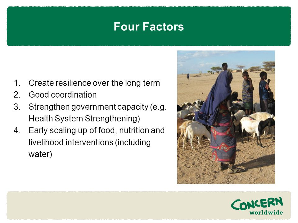 Four Factors 1.Create resilience over the long term 2.Good coordination 3.Strengthen government capacity (e.g.