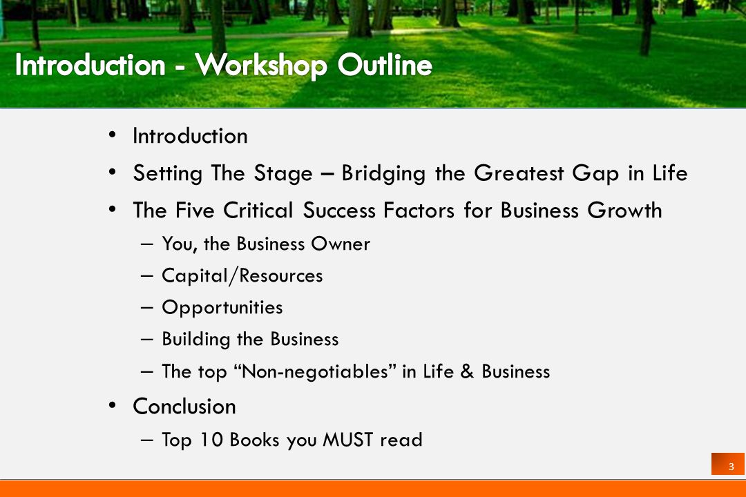 3 Introduction Setting The Stage – Bridging the Greatest Gap in Life The Five Critical Success Factors for Business Growth – You, the Business Owner – Capital/Resources – Opportunities – Building the Business – The top Non-negotiables in Life & Business Conclusion – Top 10 Books you MUST read