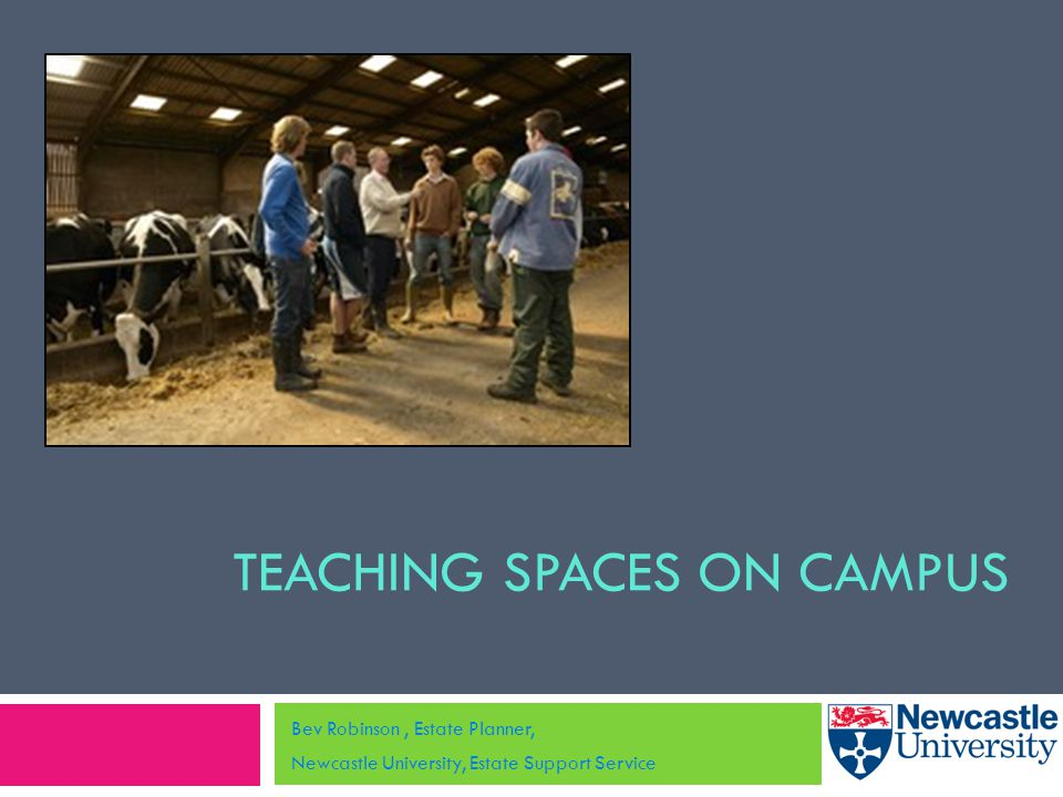TEACHING SPACES ON CAMPUS Bev Robinson, Estate Planner, Newcastle University, Estate Support Service