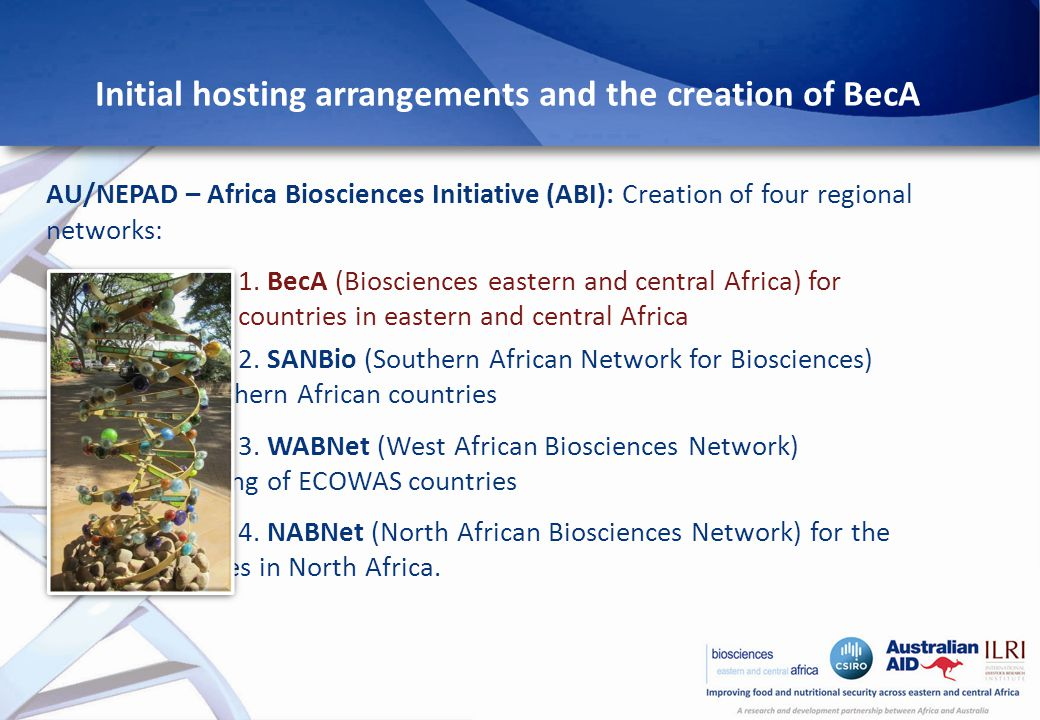 Initial hosting arrangements and the creation of BecA AU/NEPAD – Africa Biosciences Initiative (ABI): Creation of four regional networks: 1.