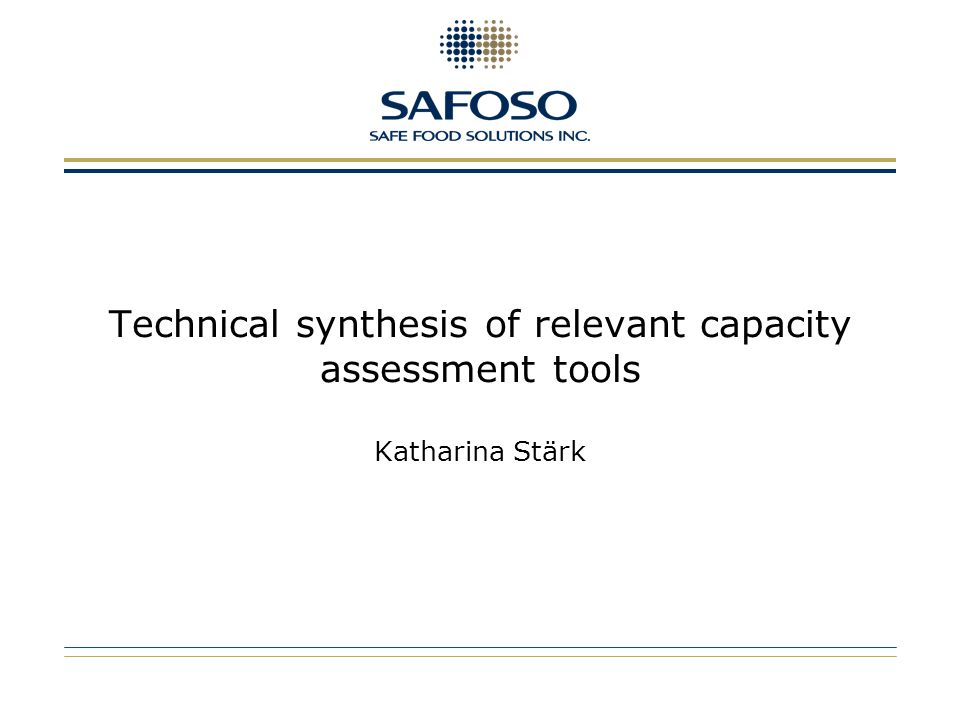 Technical synthesis of relevant capacity assessment tools Katharina Stärk