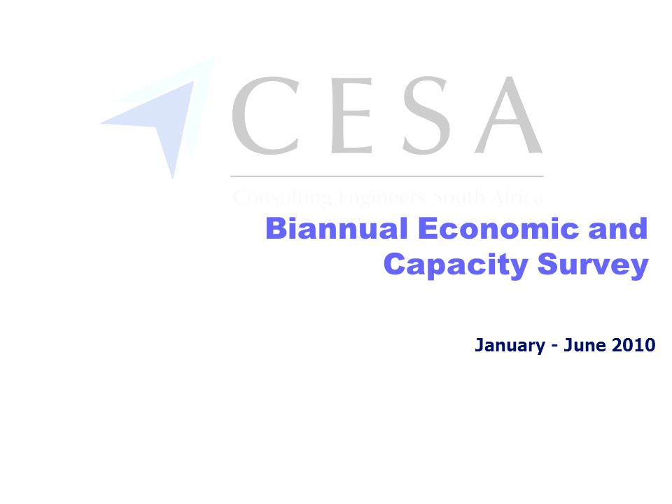 January - June 2010 Biannual Economic and Capacity Survey