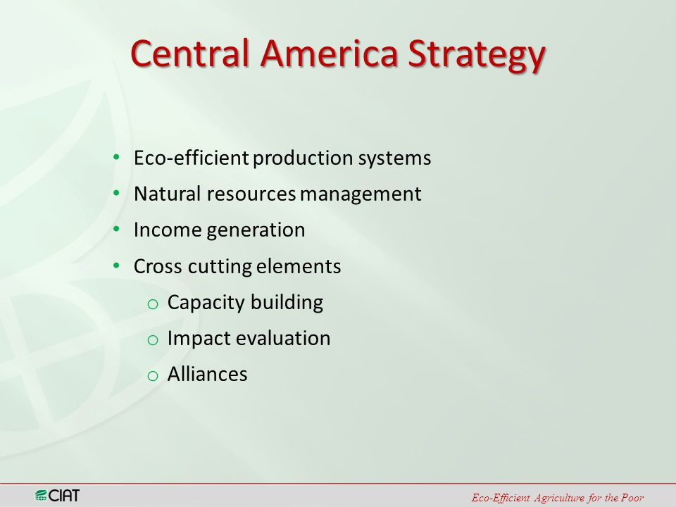 Eco-Efficient Agriculture for the Poor Central America Strategy Eco-efficient production systems Natural resources management Income generation Cross cutting elements o Capacity building o Impact evaluation o Alliances