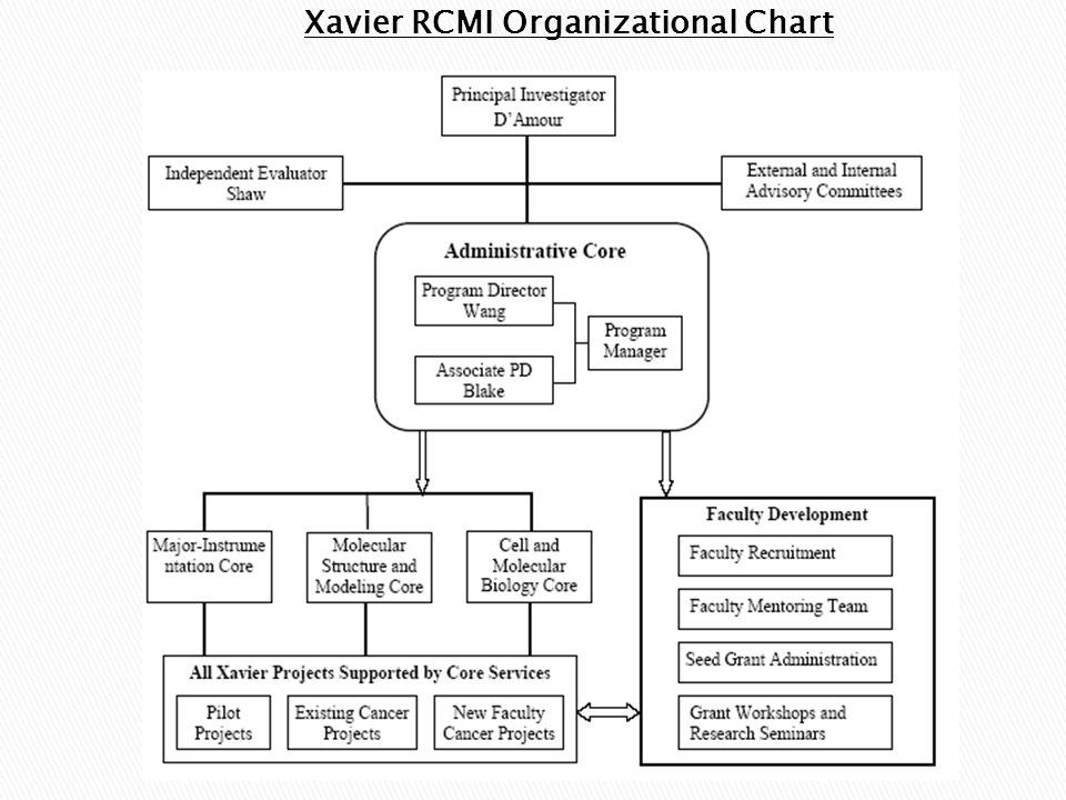 Xavier RCMI Organizational Chart