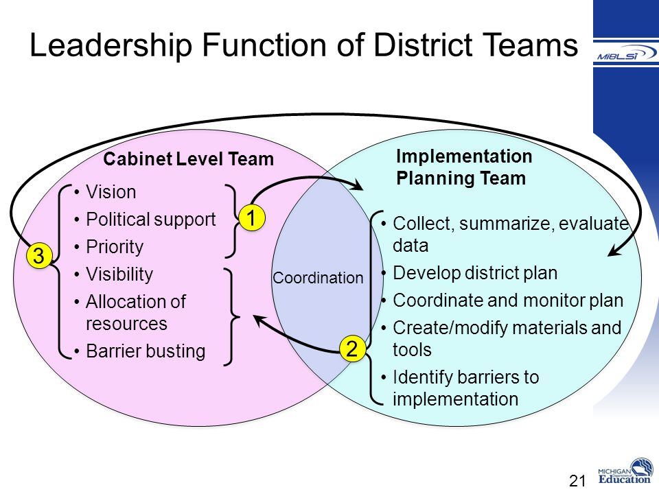 21 Cabinet Level Team Implementation Planning Team Vision Political support Priority Visibility Allocation of resources Barrier busting Collect, summa
