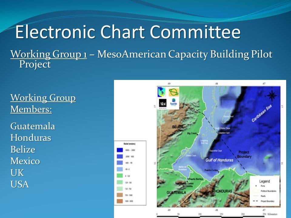Electronic Chart Committee Working Group 1 – MesoAmerican Capacity Building Pilot Project Working Group Members:GuatemalaHondurasBelizeMexicoUKUSA