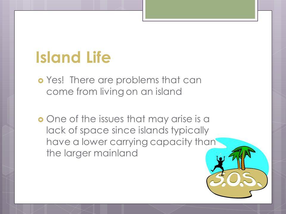 Island Life Yes.
