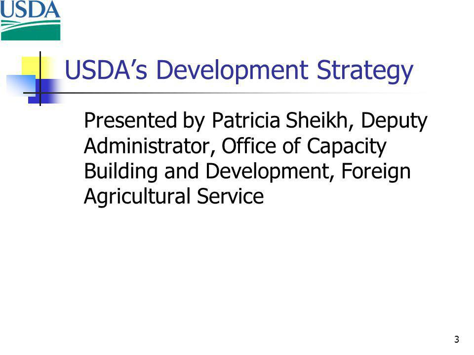 3 USDAs Development Strategy Presented by Patricia Sheikh, Deputy Administrator, Office of Capacity Building and Development, Foreign Agricultural Service