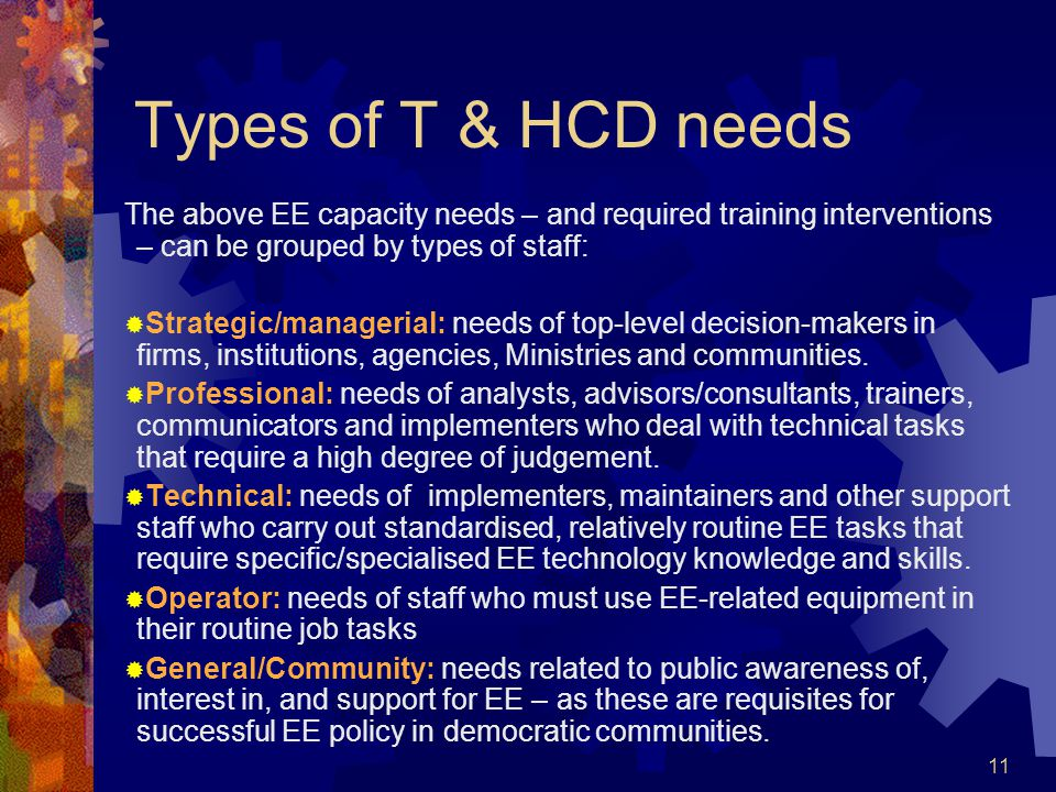 11 Types of T & HCD needs The above EE capacity needs – and required training interventions – can be grouped by types of staff: Strategic/managerial: needs of top-level decision-makers in firms, institutions, agencies, Ministries and communities.
