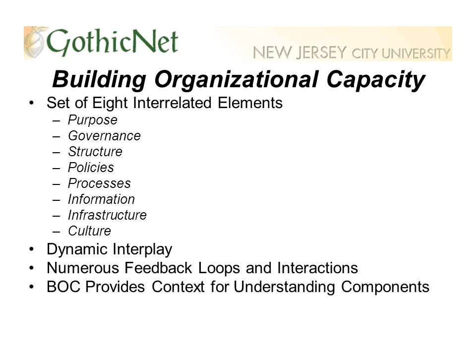 Building Organizational Capacity Set of Eight Interrelated Elements –Purpose –Governance –Structure –Policies –Processes –Information –Infrastructure –Culture Dynamic Interplay Numerous Feedback Loops and Interactions BOC Provides Context for Understanding Components